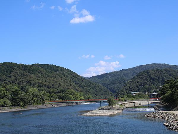 京都宇治川沿いの喜撰橋付近鵜飼船着き場と桜