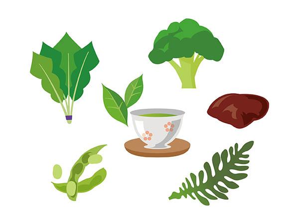 葉酸の含まれる食材