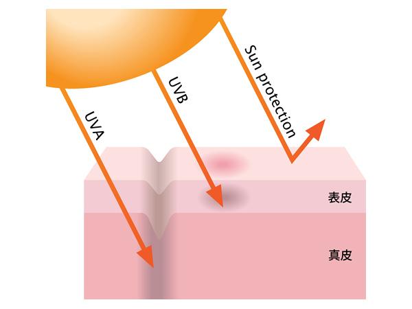 UVAとUVBのイメージ図