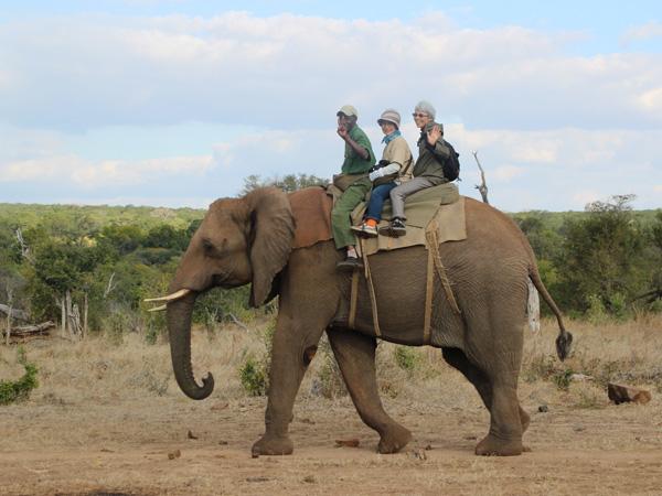 おひとり様で南部アフリカ8日間の旅-後編