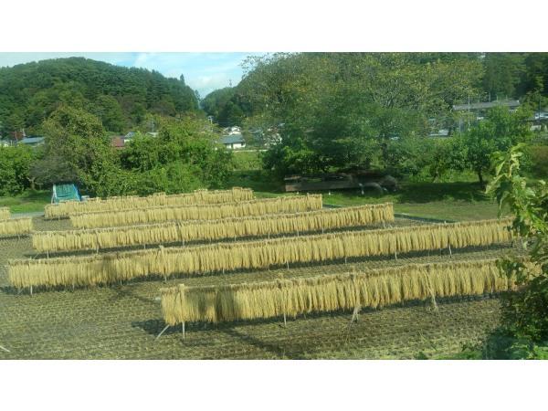 出発前に日本の原風景をしっかり焼き付けて